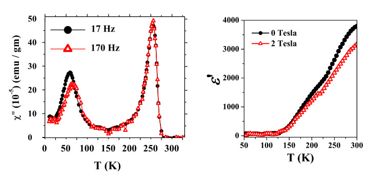 Multiglass state and room-temperature magnetodielectric effects in La2NiMnO6.